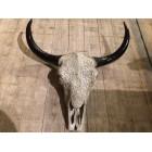 Skull bedrukt groot 64 cm