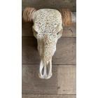 Longhoorn Skull 150 cm