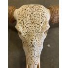 Longhoorn skull 160 cm
