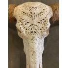Longhoorn 160 cm skull