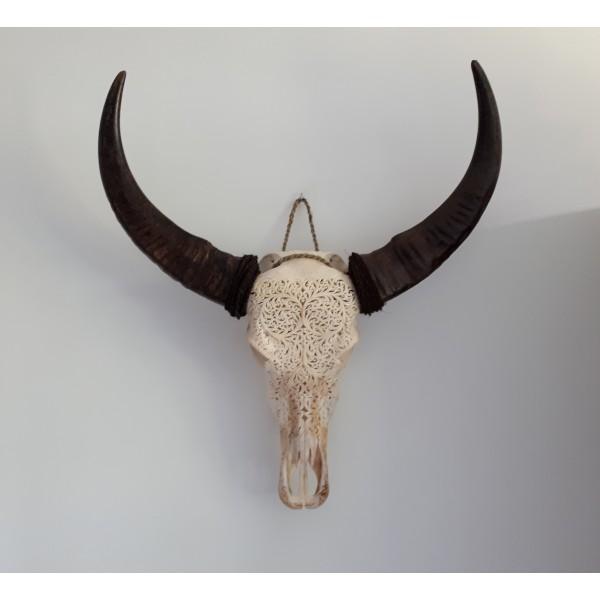 Gegraveerde Buffel Schedel Bali Hayden