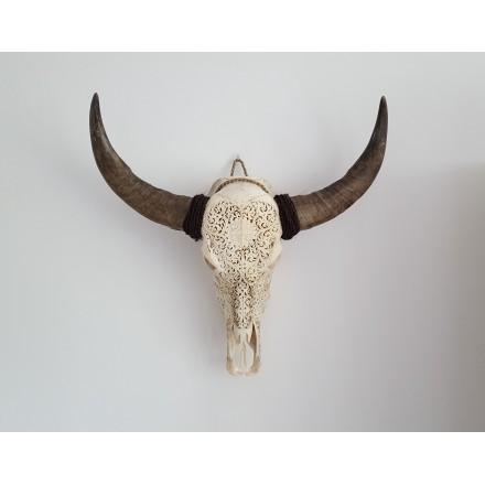 Buffel schedel skull Bali - Flower