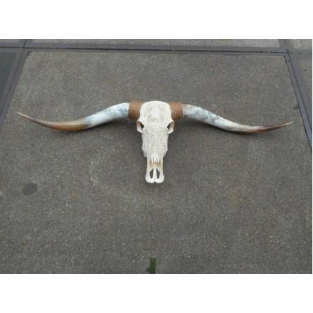 Longhorn skull gegraveerd echt 1.45 m