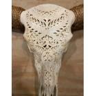 Longhoorn 160 cm Bali Premium