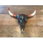 Skull bruin turquoise