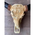 Longhorn skull 1 meter beige met zwart
