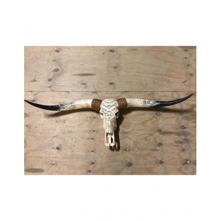 Longhorn gegraveerd skull 110 - 130 cm