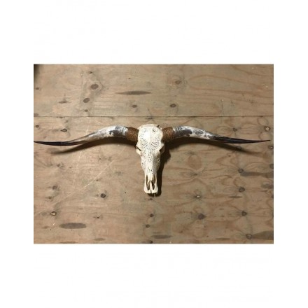 Longhorn skull gegraveerd 150 cm