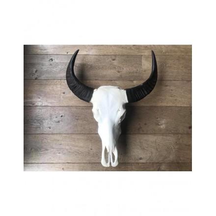 Skull echt niet gegraveerd buffel