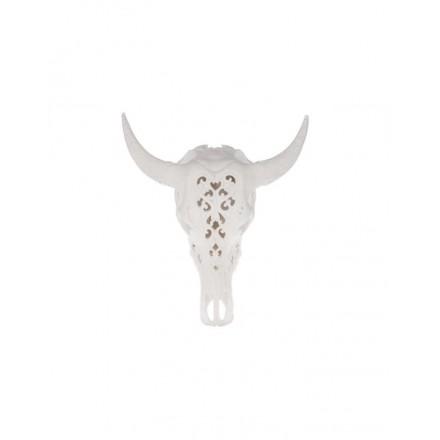 Skull wit medium