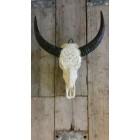 Waterbuffel skull gegraveerd